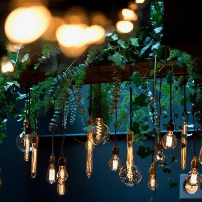 Filament light bulbs and decoration