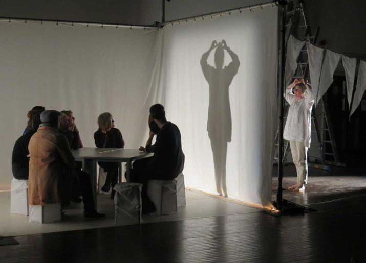 Photo of group sitting at a table with a screen to their right and a person standing behind the screen casting a shadow onto it